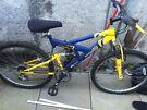 emmelle blue & yellow bike