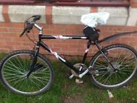 24' moutain bike