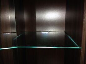 Glass Shelf Cabinet LED Light Clip 63mm Set of 2x2