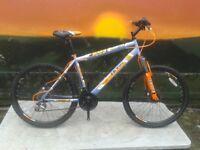 New Boss Vortex Steel HT Mountain Bike - RRP £269