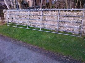 Galvanised field gate for sale (16ft)