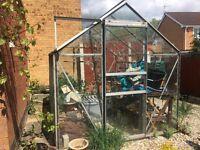 8x10 Aluminium Greenhouse