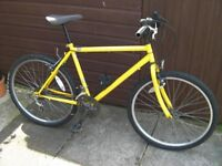 """Gents Mountain bike, 26"""" Alloy wheels. 19"""" frame, 15 gears,"""