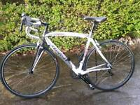 Wilier triestina lzoard carbon fibre road bike