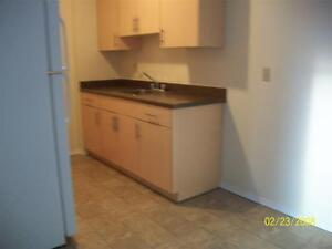 Wascana Townhomes - Three Bedrooms Townhome for Rent Regina Regina Area image 3
