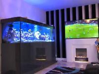 Marine Aquarium 7x2x2 ND Aquatics full set up