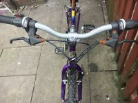 Bargain !!! Lady's pedalbike For Sale