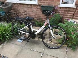 Apollo Elyse Ladies Hybrid Bike