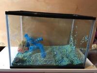 Fish tank and gravel