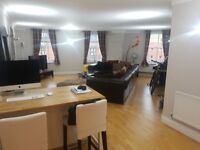 Comfortable Double Room available in a large spacious recently renovated flat in London Bridge