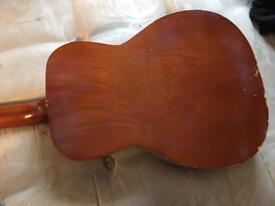 Michigan Guitar
