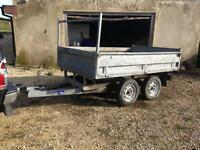 Tipper trailer 8x5
