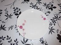 12 NEW white plates