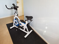 Bodymax B2 Indoor Cycle Exercise Bike + LCD Monitor w/Mat