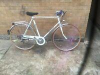 Raleigh vintage hybrid mountain bike