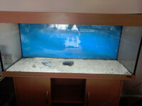 250L 4ft Fish tank with stand for sale