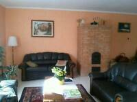 End of tenancy, after painting