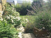 Landscape and horticultural gardener