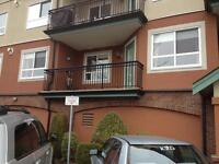 Apt 2202- 8485 Young Road, Chilliwack, V2P 7Y7