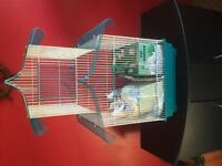 High quaility bird cage with accessories and feed