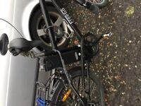 Electric bike freego