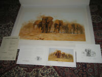 David Shepherd Limited Edition Print 'Dusty Evening' with Extras