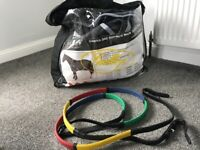 Stable rug and reins