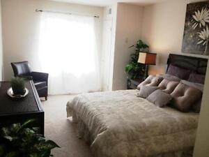 Fallowfield Towers II - The Hickory Apartment for Rent Kitchener / Waterloo Kitchener Area image 16