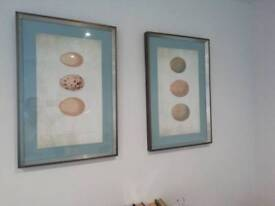 6 canvases/framed pictures in neutral colour