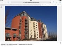 1 bed apartment for rent SA1 Swansea