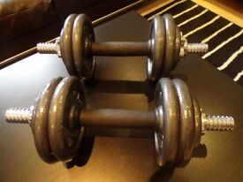 Dumbells bar and 12 weights, Pro Power. ( Whitechapel )