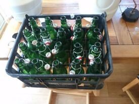 20 grolsch flip top bottles for home brewing