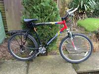 Diamondback gents large frame mountain bike 24 speed shimano gears Used but in good working order