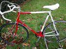 Orbit Clements 12speed Road Bike XL 63cm/25'' Reynolds 501 Lightweight Steel Frame Fast Alloy Wheels