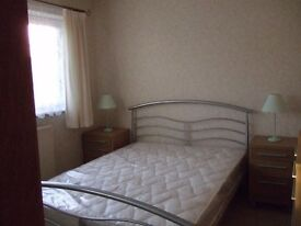 Nice room available to professional female