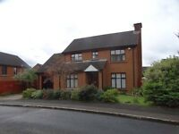 33 Glebe Manor, Newtownabbey, Fantastic 3 Bedroom Detached Family Home £700PCM