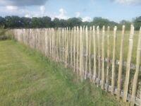 4ft chestnut fencing