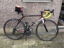 FOR SALE - FOCUS CAYO Carbon Road Bike in Great Condition