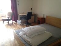 Large double available now in Kelvingrove area