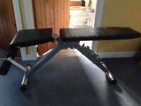 Pro Power folding weight bench.