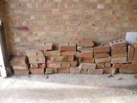 Around 80 bricks