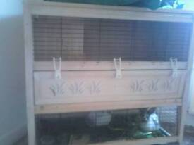 Two rabbits and cage