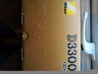 Nikon D3300 body + Nikon AF-S DX 35mm f/1.8G lens