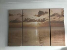 NEXT WALL ART / CANVAS PICTURES