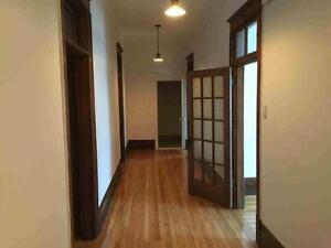 Fully renovated 4 bedroom apartment-Cote-des-Neiges-NDG