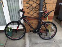 Raleigh Talus men's mountain bike