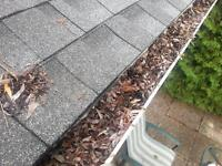 Eavestrough Cleaning &Gutter Guard Installation (613)302-9295