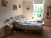 Sunny City Centre Room to Rent *June & July Only*