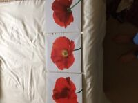 Poppy canvases x 3