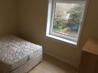 Bright double room in spacious flat